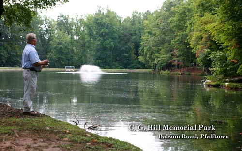 Forsyth county north carolina cg hill memorial park balsom road pfafftown fandeluxe Image collections